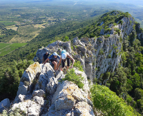 Team building Nature face nord du pic saint loup
